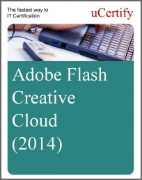 Adobe Flash Creative Cloud (2014) eLearning Course