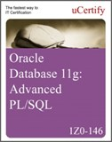 Oracle Database 11g: Advanced PL/SQL (1Z0-146) eLearning Course
