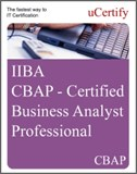 Certified Business Analyst Professional