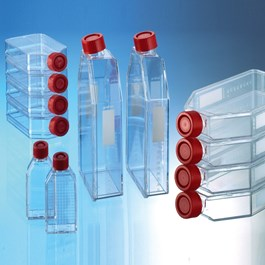 Cellstar Cell Culture Flask Group