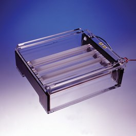 23 x 14 cm DNA Plus Agarose Gel System