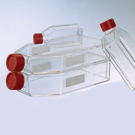 Cellstar Filter Cap Flask Group